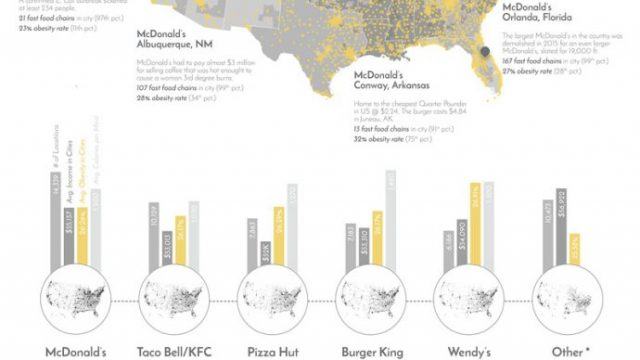 Burgers and Fries and Data Visualization