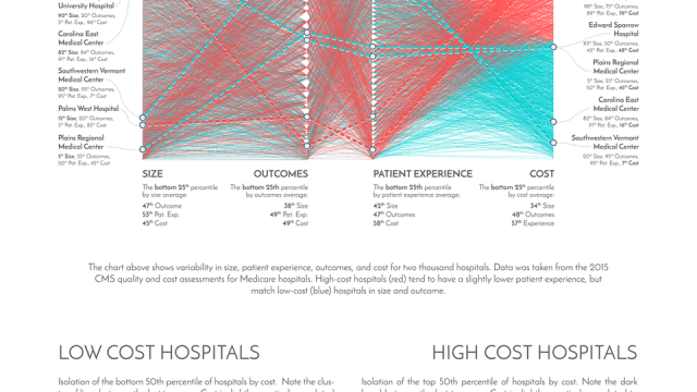 "Data visualization ""Weaving Hospital Variation"""
